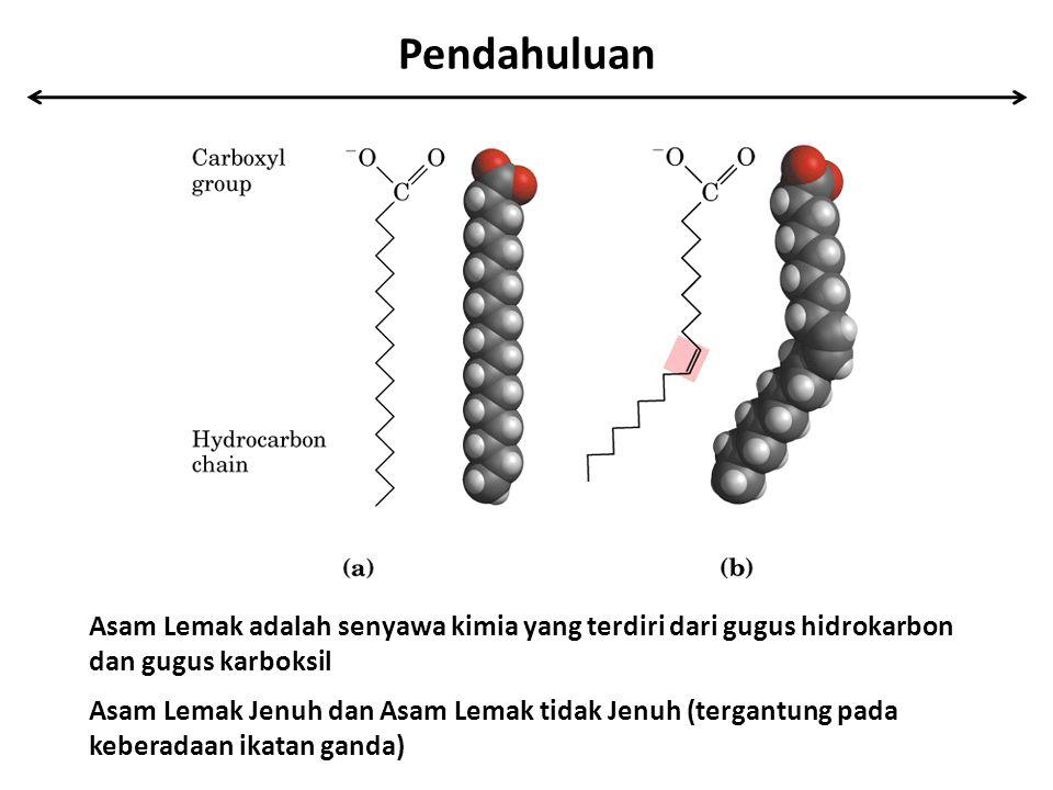 Pendahuluan Asam Lemak adalah senyawa kimia yang terdiri dari gugus hidrokarbon dan gugus karboksil Asam Lemak Jenuh dan Asam Lemak tidak Jenuh (terga