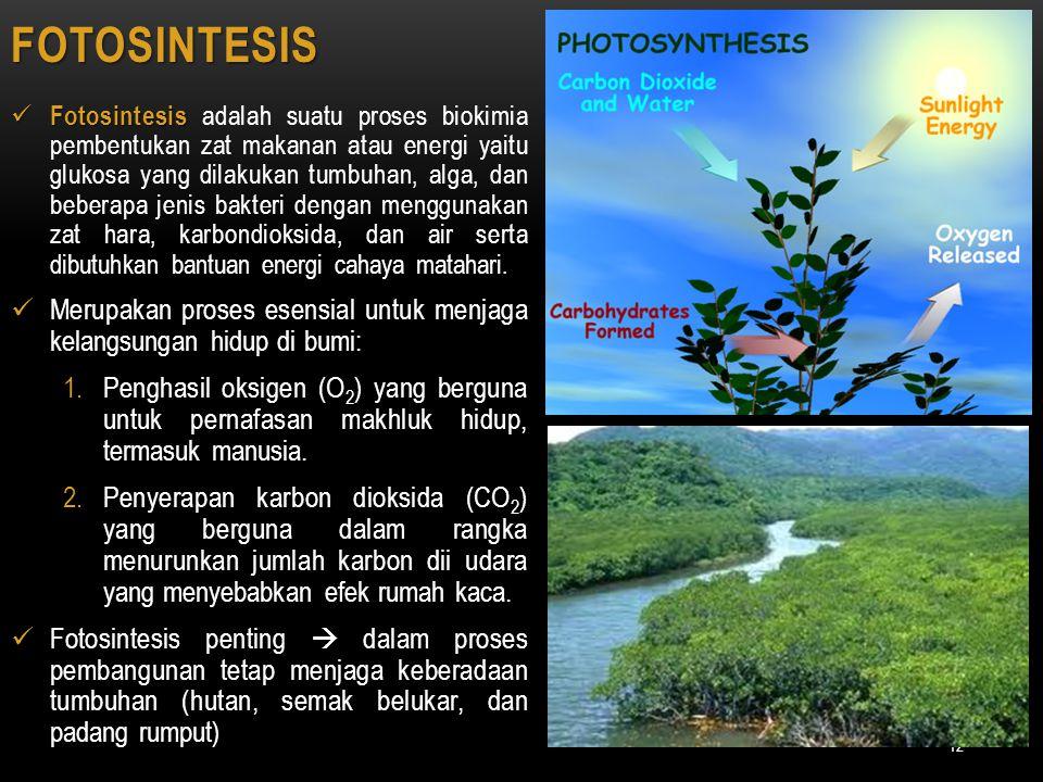 Fotosintesis Fotosintesis adalah suatu proses biokimia pembentukan zat makanan atau energi yaitu glukosa yang dilakukan tumbuhan, alga, dan beberapa j