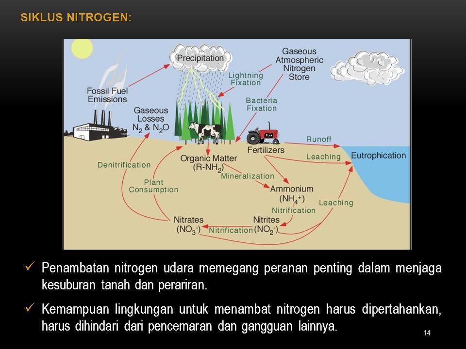 Penambatan nitrogen udara memegang peranan penting dalam menjaga kesuburan tanah dan perariran. Penambatan nitrogen udara memegang peranan penting dal