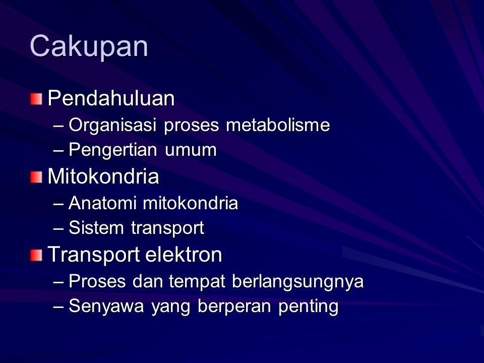Cakupan Pendahuluan –Organisasi proses metabolisme –Pengertian umum Mitokondria –Anatomi mitokondria –Sistem transport Transport elektron –Proses dan