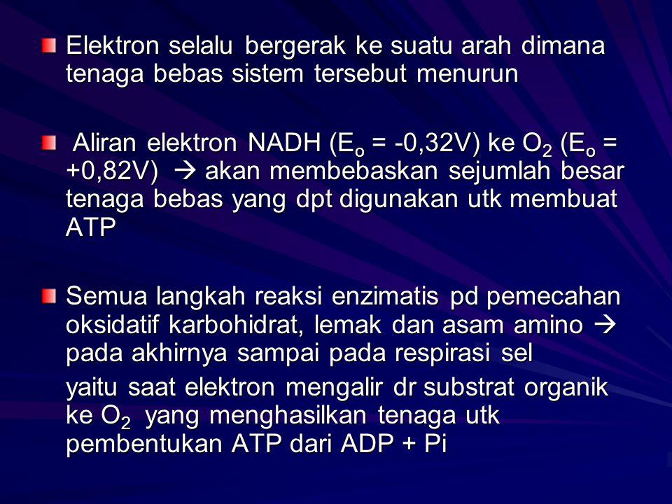 Elektron selalu bergerak ke suatu arah dimana tenaga bebas sistem tersebut menurun Aliran elektron NADH (E o = -0,32V) ke O 2 (E o = +0,82V)  akan me