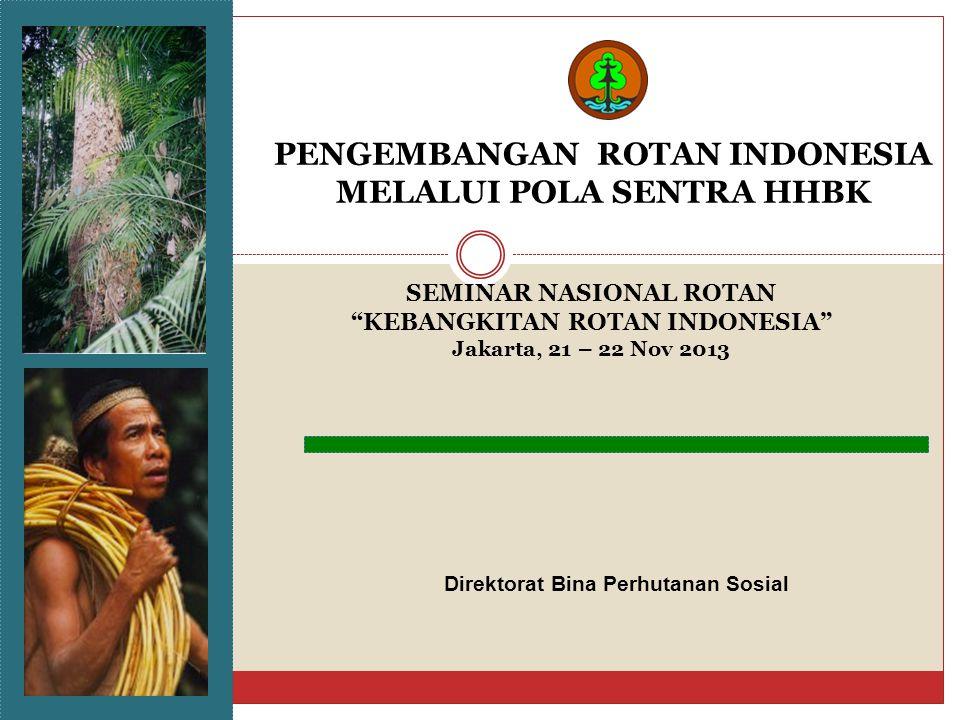 PENGEMBANGAN ROTAN INDONESIA MELALUI POLA SENTRA HHBK Direktorat Bina Perhutanan Sosial SEMINAR NASIONAL ROTAN KEBANGKITAN ROTAN INDONESIA Jakarta, 21 – 22 Nov 2013