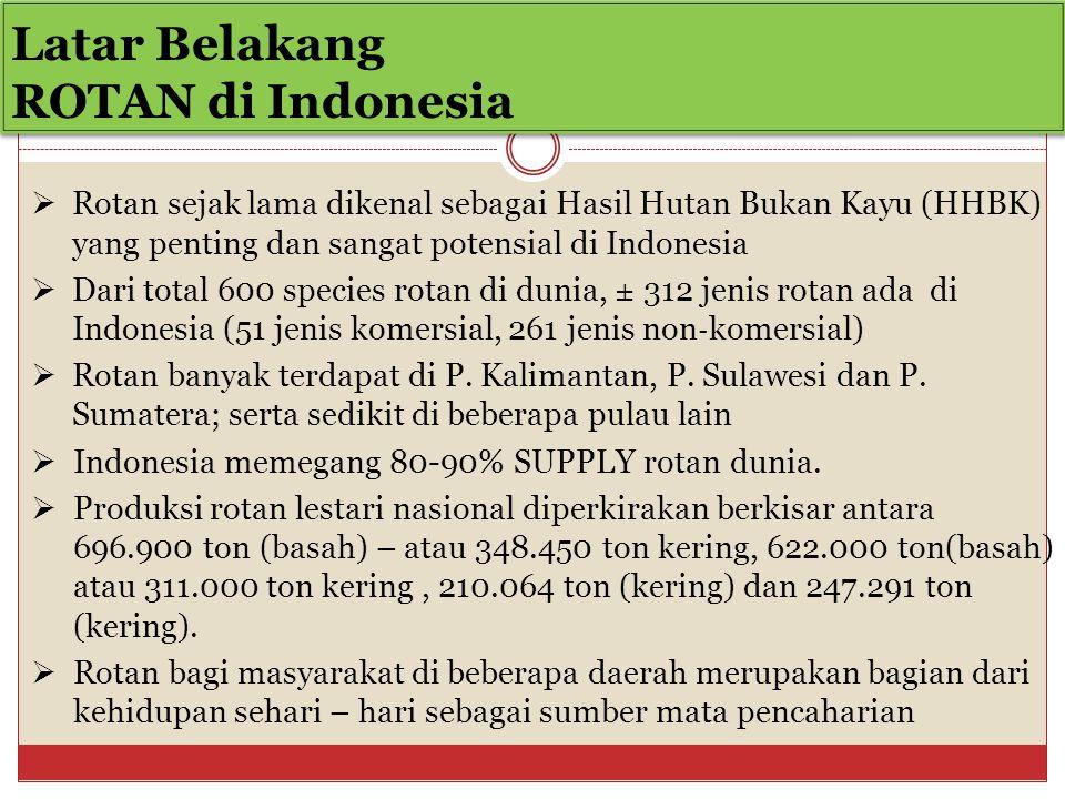 Latar Belakang ROTAN di Indonesia  Rotan sejak lama dikenal sebagai Hasil Hutan Bukan Kayu (HHBK) yang penting dan sangat potensial di Indonesia  Dari total 600 species rotan di dunia, ± 312 jenis rotan ada di Indonesia (51 jenis komersial, 261 jenis non ‐ komersial)  Rotan banyak terdapat di P.