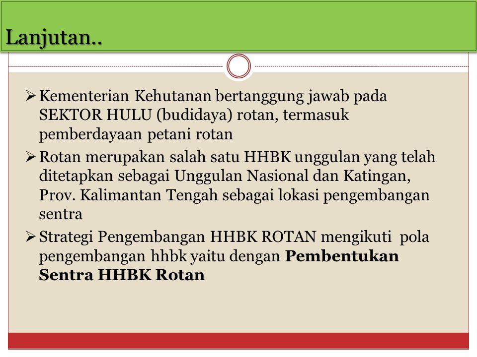 Lanjutan..Lanjutan..  Kementerian Kehutanan bertanggung jawab pada SEKTOR HULU (budidaya) rotan, termasuk pemberdayaan petani rotan  Rotan merupakan