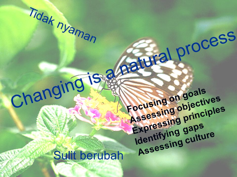 Changing is a natural process Sulit berubah Tidak nyaman Focusing on goals Assessing objectives Expressing principles Identifying gaps Assessing cultu