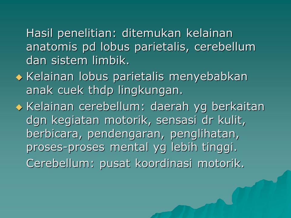 Hasil penelitian: ditemukan kelainan anatomis pd lobus parietalis, cerebellum dan sistem limbik.  Kelainan lobus parietalis menyebabkan anak cuek thd