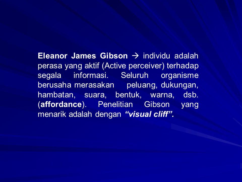 Eleanor James Gibson  individu adalah perasa yang aktif (Active perceiver) terhadap segala informasi. Seluruh organisme berusaha merasakan peluang, d