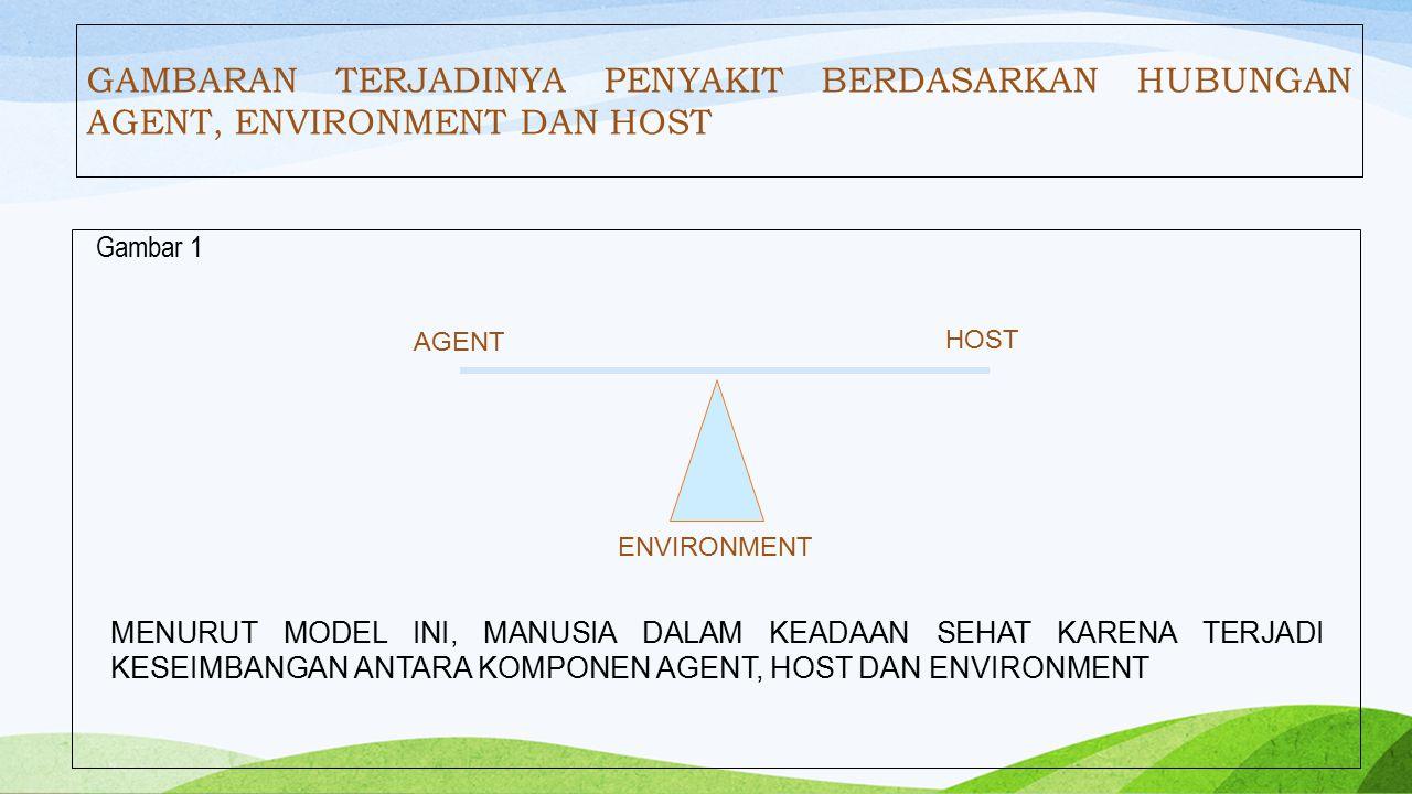 3.Environment (Lingkungan) Agregat dari seluruh kondisi dan pengaruh luar yang mempengaruhi kehidupan dan perkembangan pejamu.