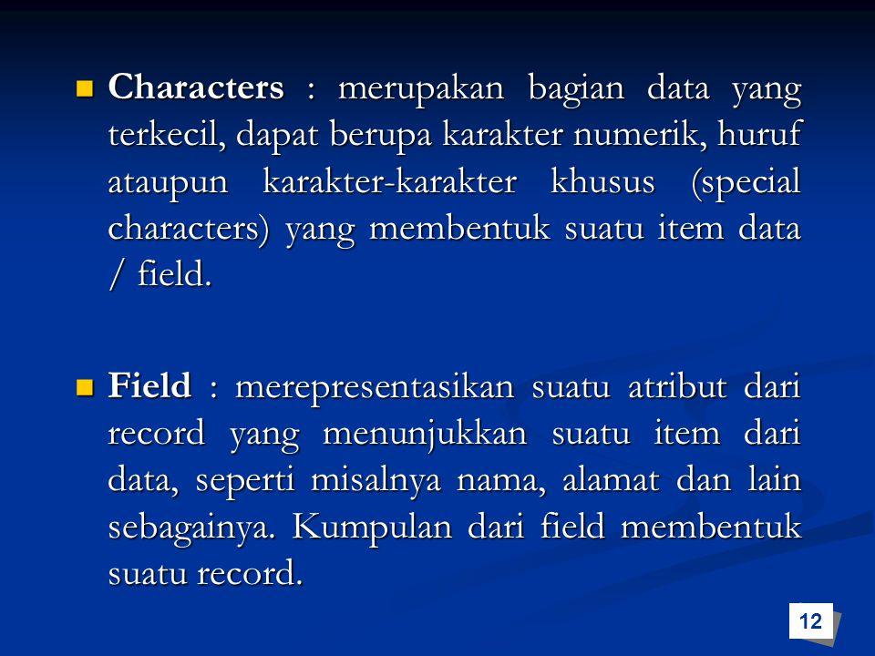 Characters : merupakan bagian data yang terkecil, dapat berupa karakter numerik, huruf ataupun karakter-karakter khusus (special characters) yang memb