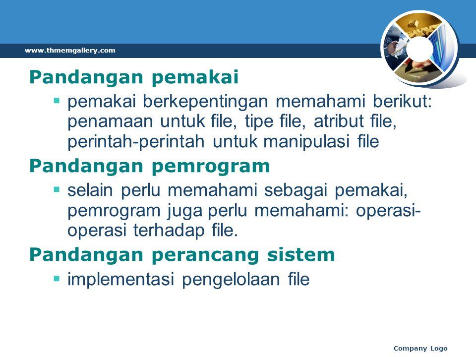 Pandangan pemakai  pemakai berkepentingan memahami berikut: penamaan untuk file, tipe file, atribut file, perintah-perintah untuk manipulasi file Pandangan pemrogram  selain perlu memahami sebagai pemakai, pemrogram juga perlu memahami: operasi- operasi terhadap file.