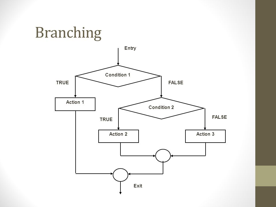 Branching Entry Condition 1 Action 1 Condition 2 Action 3Action 2 Exit TRUEFALSE TRUE FALSE