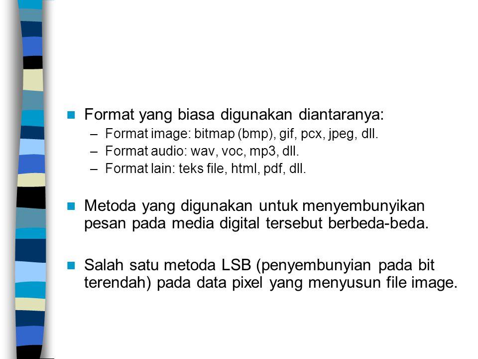 Format yang biasa digunakan diantaranya: –Format image: bitmap (bmp), gif, pcx, jpeg, dll.