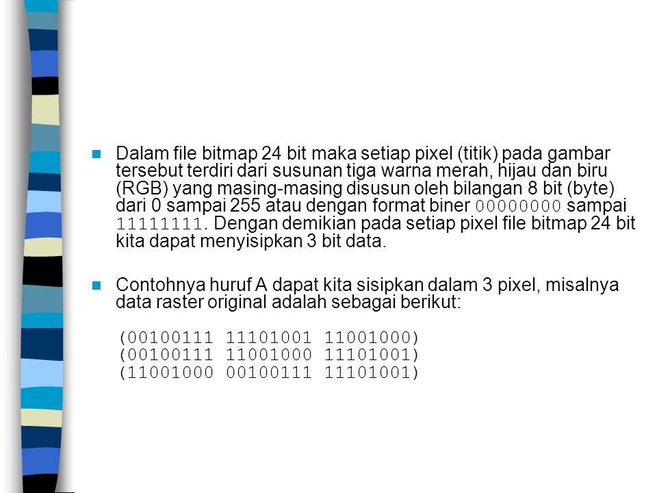 Dalam file bitmap 24 bit maka setiap pixel (titik) pada gambar tersebut terdiri dari susunan tiga warna merah, hijau dan biru (RGB) yang masing-masing disusun oleh bilangan 8 bit (byte) dari 0 sampai 255 atau dengan format biner 00000000 sampai 11111111.