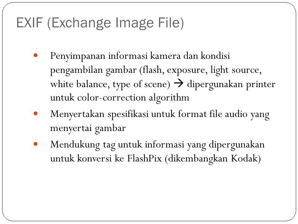 EXIF (Exchange Image File) Penyimpanan informasi kamera dan kondisi pengambilan gambar (flash, exposure, light source, white balance, type of scene) 