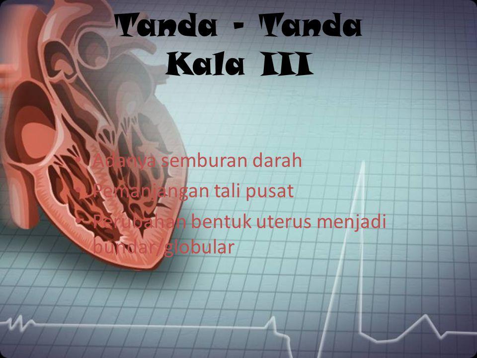Tanda – Tanda Kala III Adanya semburan darah Pemanjangan tali pusat Perubahan bentuk uterus menjadi bundar/globular