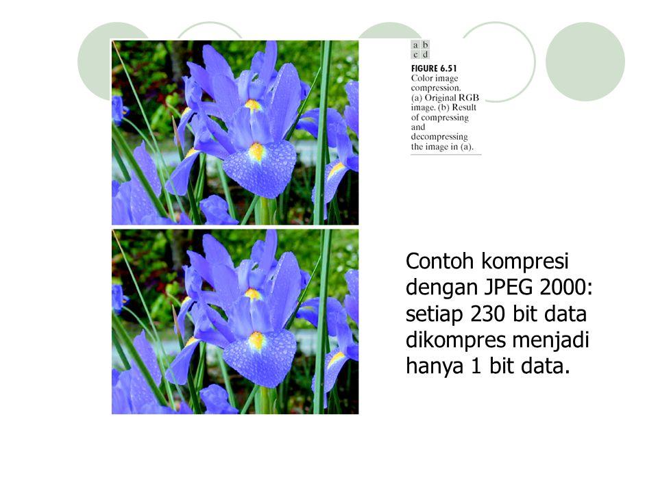 Contoh kompresi dengan JPEG 2000: setiap 230 bit data dikompres menjadi hanya 1 bit data.