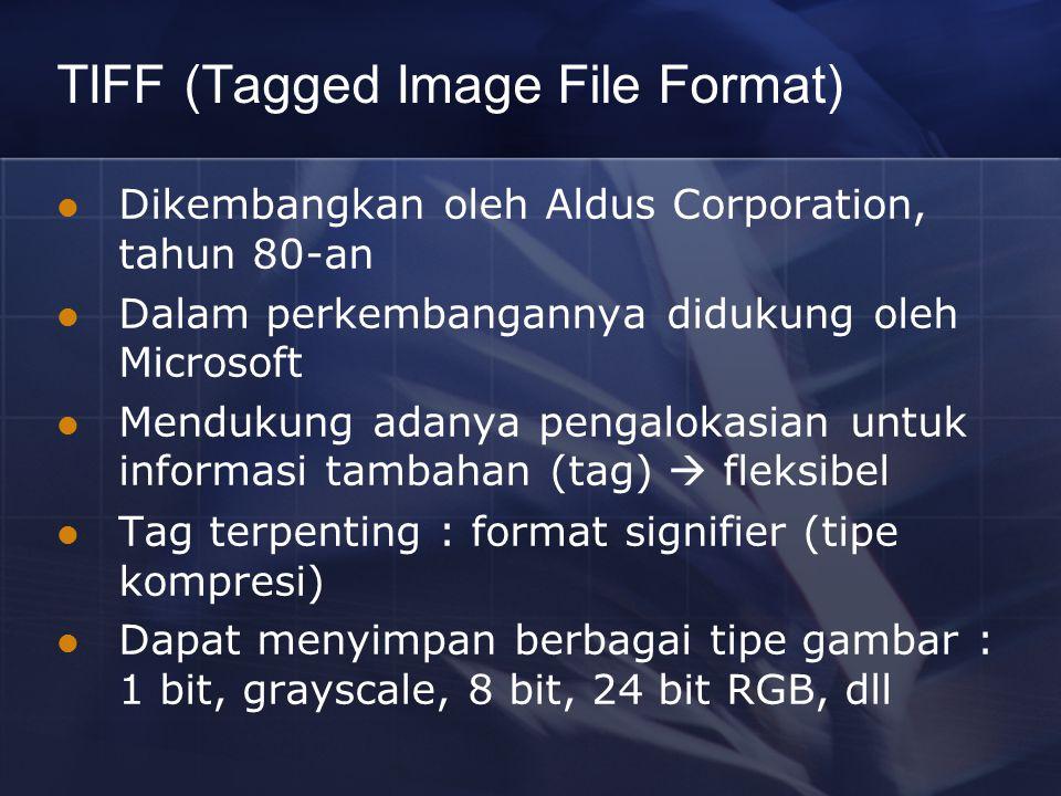 TIFF (Tagged Image File Format) Dikembangkan oleh Aldus Corporation, tahun 80-an Dalam perkembangannya didukung oleh Microsoft Mendukung adanya pengal