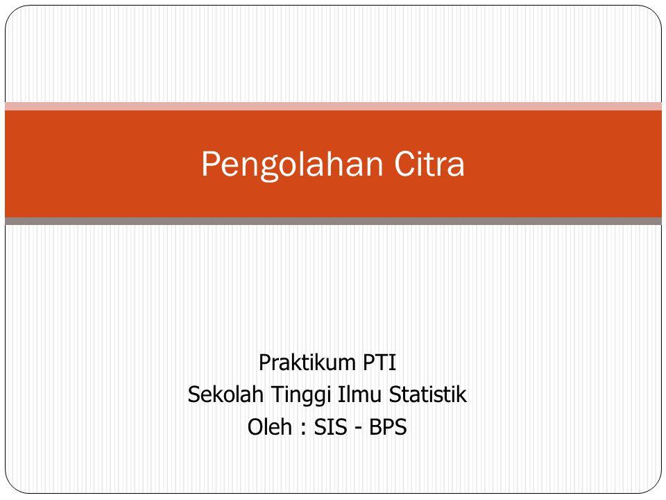 Praktikum PTI Sekolah Tinggi Ilmu Statistik Oleh : SIS - BPS Pengolahan Citra