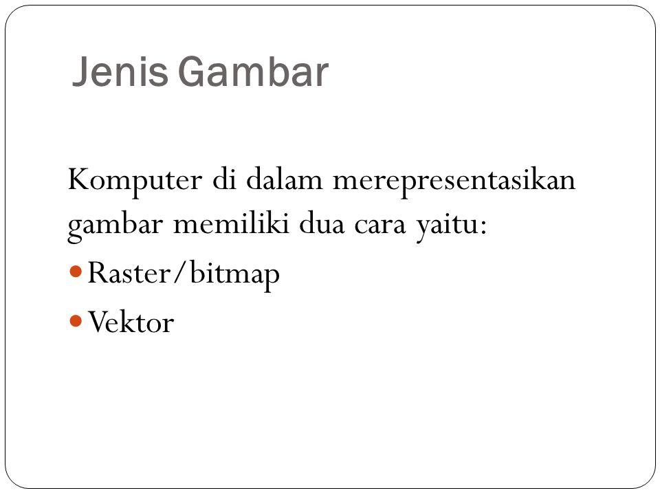 Jenis Gambar Komputer di dalam merepresentasikan gambar memiliki dua cara yaitu: Raster/bitmap Vektor