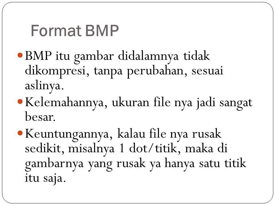 Format BMP BMP itu gambar didalamnya tidak dikompresi, tanpa perubahan, sesuai aslinya.