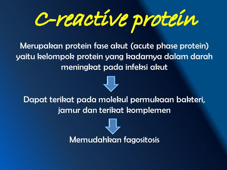 Merupakan protein fase akut (acute phase protein) yaitu kelompok protein yang kadarnya dalam darah meningkat pada infeksi akut Dapat terikat pada mole