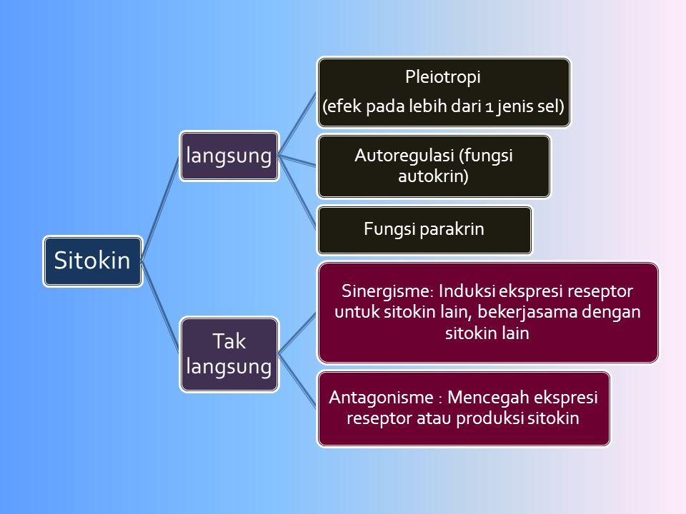 Sitokin langsung Pleiotropi (efek pada lebih dari 1 jenis sel) Autoregulasi (fungsi autokrin) Fungsi parakrin Tak langsung Sinergisme: Induksi ekspres