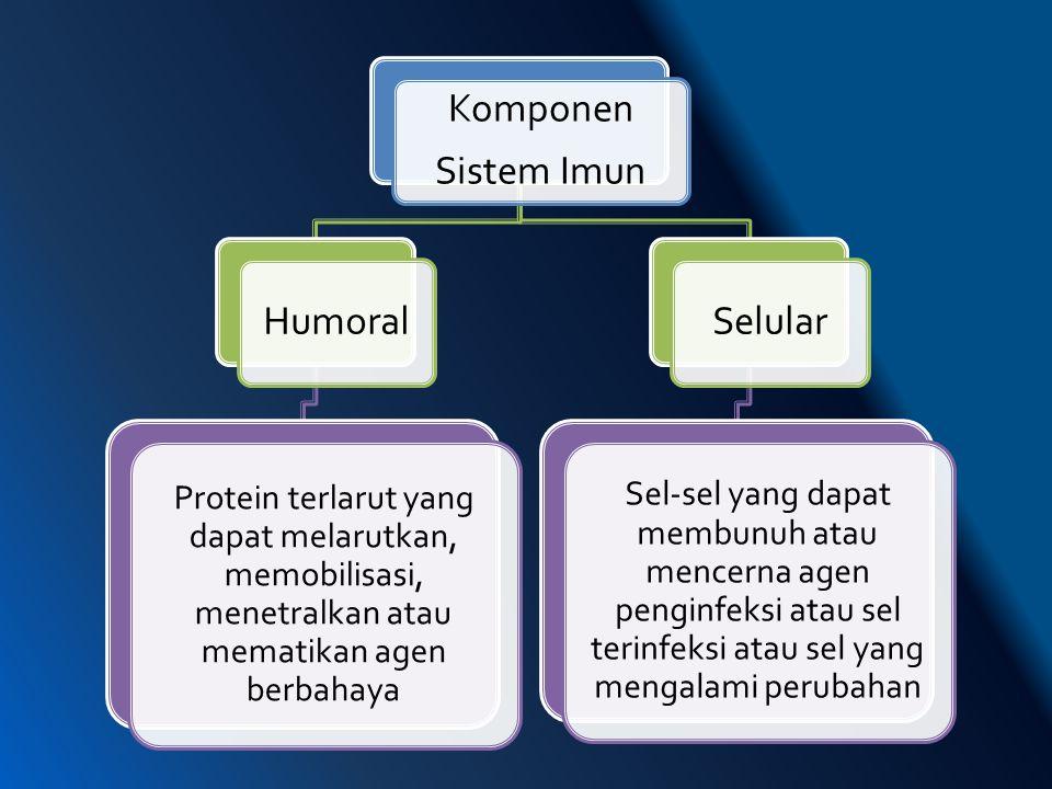 Komponen Sistem Imun Humoral Protein terlarut yang dapat melarutkan, memobilisasi, menetralkan atau mematikan agen berbahaya Selular Sel-sel yang dapa