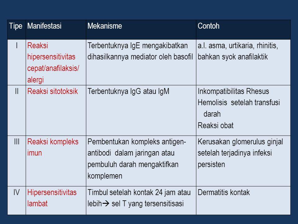 TipeManifestasiMekanismeContoh I Reaksi hipersensitivitas cepat/anafilaksis/ alergi Terbentuknya IgE mengakibatkan dihasilkannya mediator oleh basofil