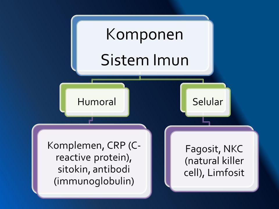 Komponen Sistem Imun Humoral Komplemen, CRP (C- reactive protein), sitokin, antibodi (immunoglobulin) Selular Fagosit, NKC (natural killer cell), Limf