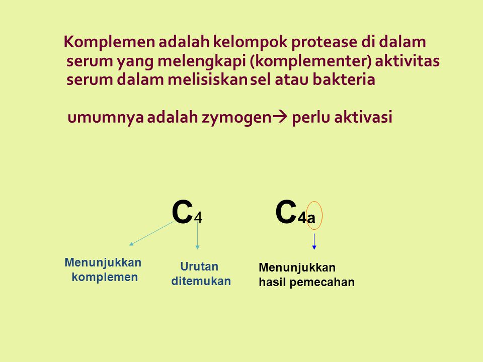 Komplemen adalah kelompok protease di dalam serum yang melengkapi (komplementer) aktivitas serum dalam melisiskan sel atau bakteria umumnya adalah zym