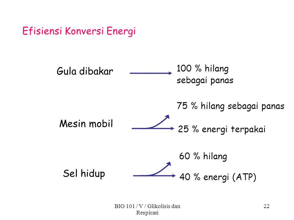 BIO 101 / V / Glikolisis dan Respirasi 22 Efisiensi Konversi Energi 40 % energi (ATP) Sel hidup 100 % hilang sebagai panas 75 % hilang sebagai panas 2