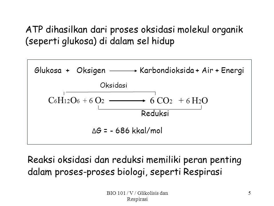 BIO 101 / V / Glikolisis dan Respirasi 5 ATP dihasilkan dari proses oksidasi molekul organik (seperti glukosa) di dalam sel hidup Karbondioksida + Air