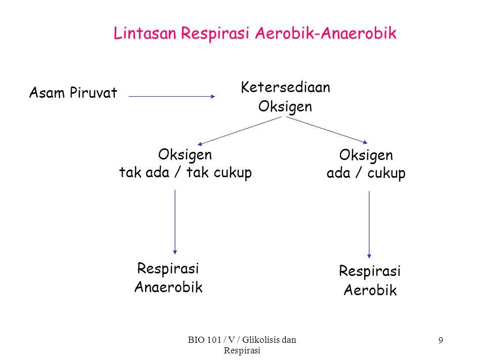 9 Lintasan Respirasi Aerobik-Anaerobik Asam Piruvat Ketersediaan Oksigen tak ada / tak cukup Respirasi Anaerobik BIO 101 / V / Glikolisis dan Respiras
