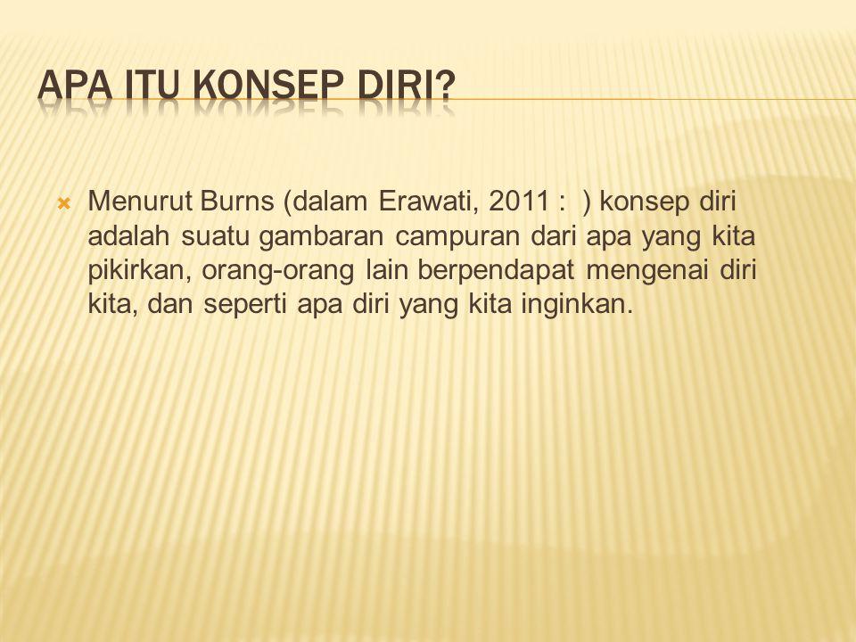  Menurut Burns (dalam Erawati, 2011 : ) konsep diri adalah suatu gambaran campuran dari apa yang kita pikirkan, orang-orang lain berpendapat mengenai