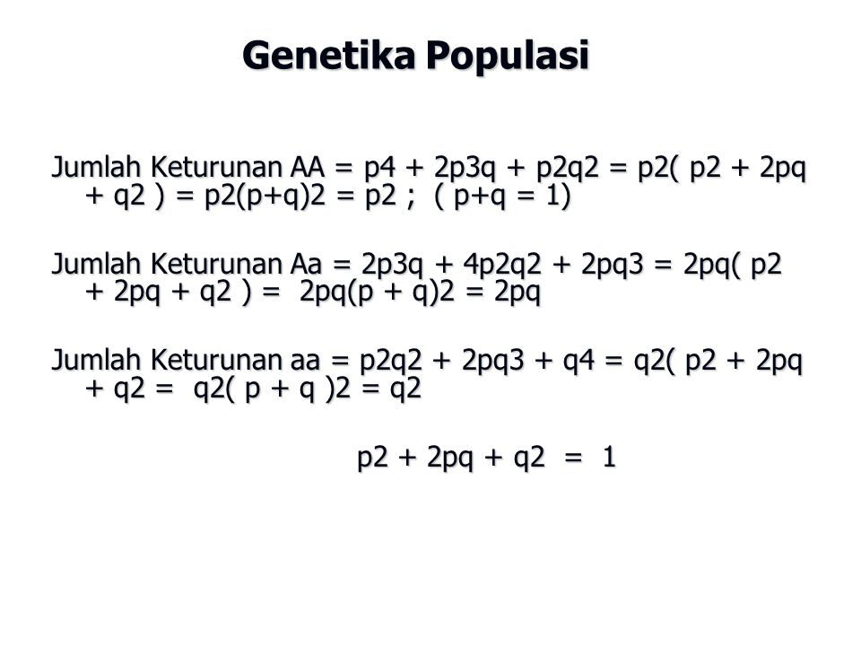 Genetika Populasi Jumlah Keturunan AA = p4 + 2p3q + p2q2 = p2( p2 + 2pq + q2 ) = p2(p+q)2 = p2 ; ( p+q = 1) Jumlah Keturunan Aa = 2p3q + 4p2q2 + 2pq3