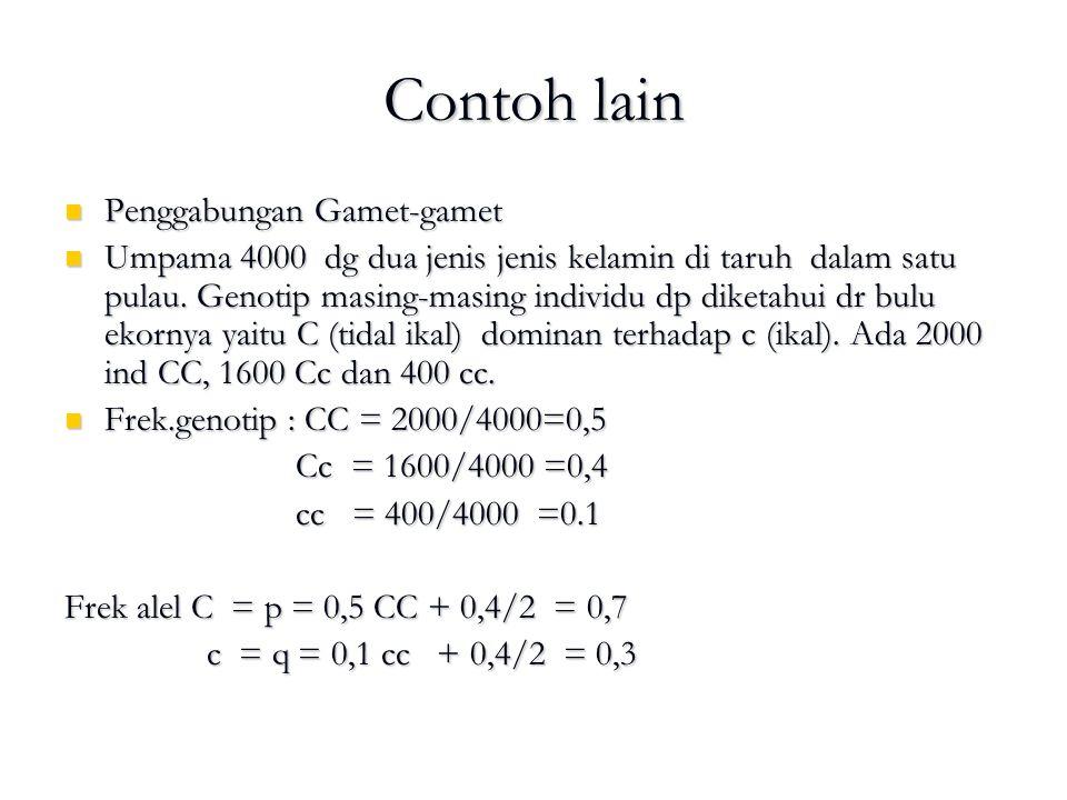 Contoh lain Penggabungan Gamet-gamet Penggabungan Gamet-gamet Umpama 4000 dg dua jenis jenis kelamin di taruh dalam satu pulau. Genotip masing-masing