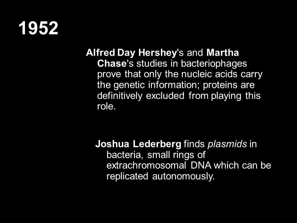 1952 Alfred Day Hershey s and Martha Chase s studies in bacteriophages prove that only the nucleic acids carry the genetic information; proteins are definitively excluded from playing this role.