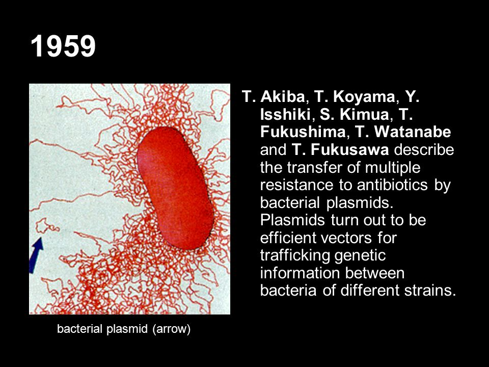 1959 T. Akiba, T. Koyama, Y. Isshiki, S. Kimua, T.