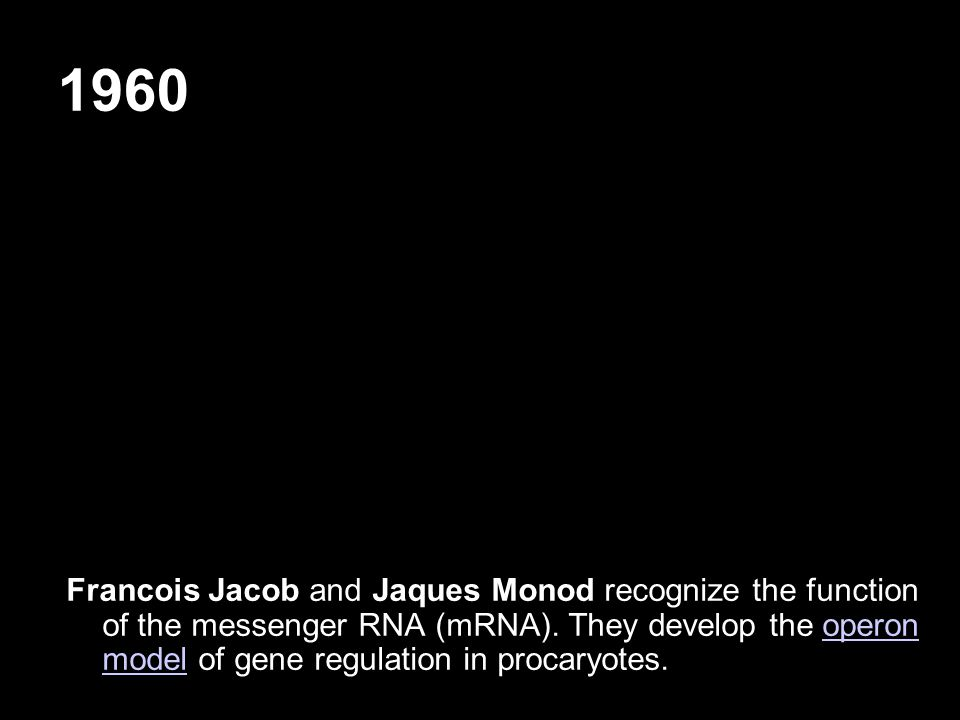 1960 Francois Jacob and Jaques Monod recognize the function of the messenger RNA (mRNA). They develop the operon model of gene regulation in procaryot