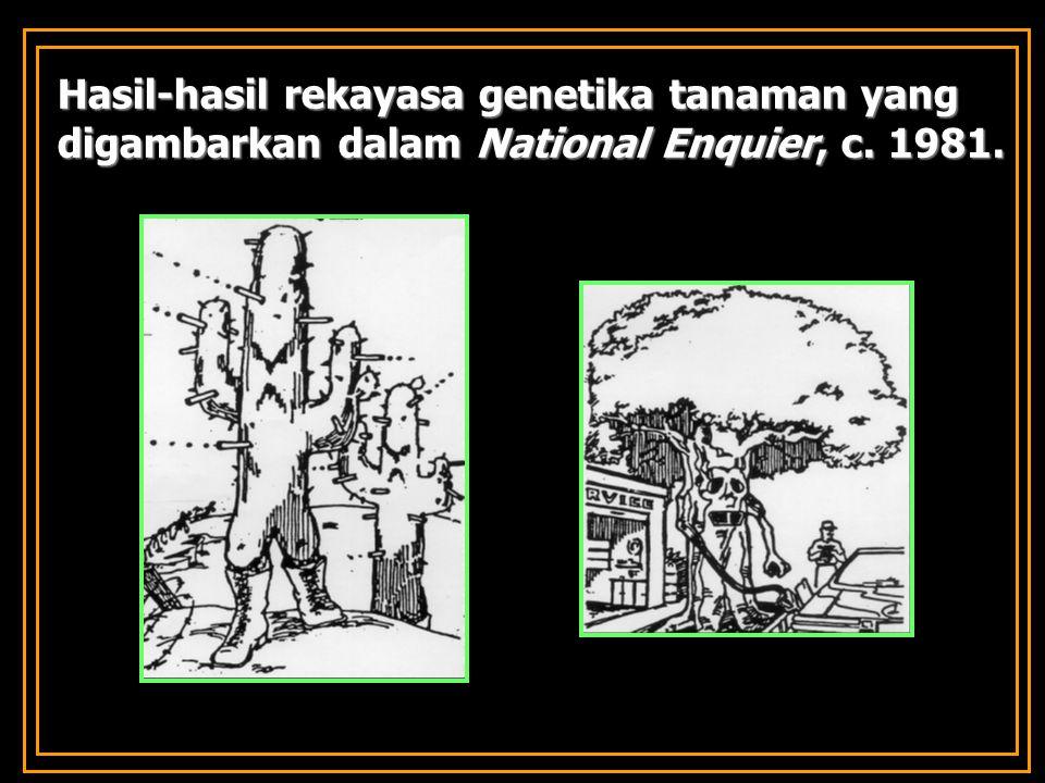 Hasil-hasil rekayasa genetika tanaman yang digambarkan dalam National Enquier, c. 1981.