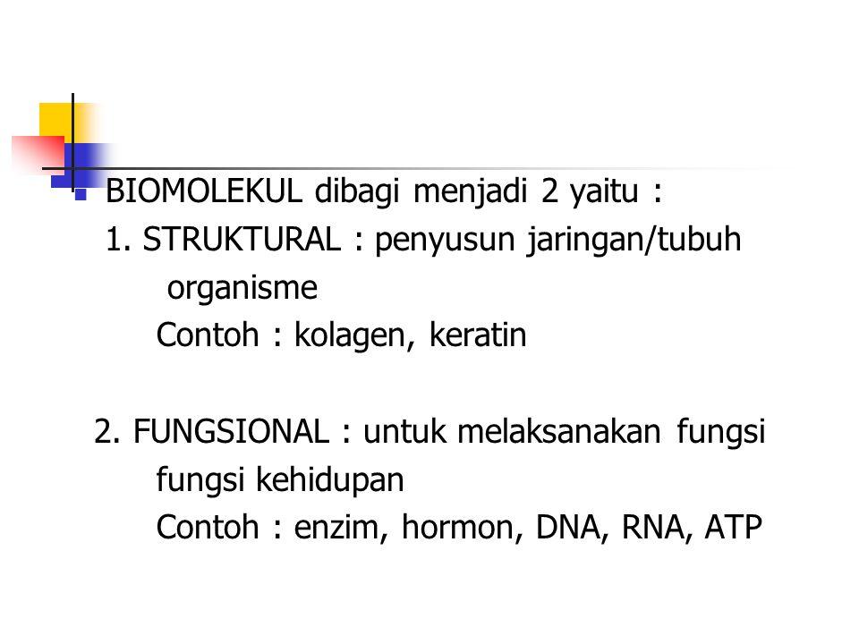 BIOMOLEKUL dibagi menjadi 2 yaitu : 1. STRUKTURAL : penyusun jaringan/tubuh organisme Contoh : kolagen, keratin 2. FUNGSIONAL : untuk melaksanakan fun