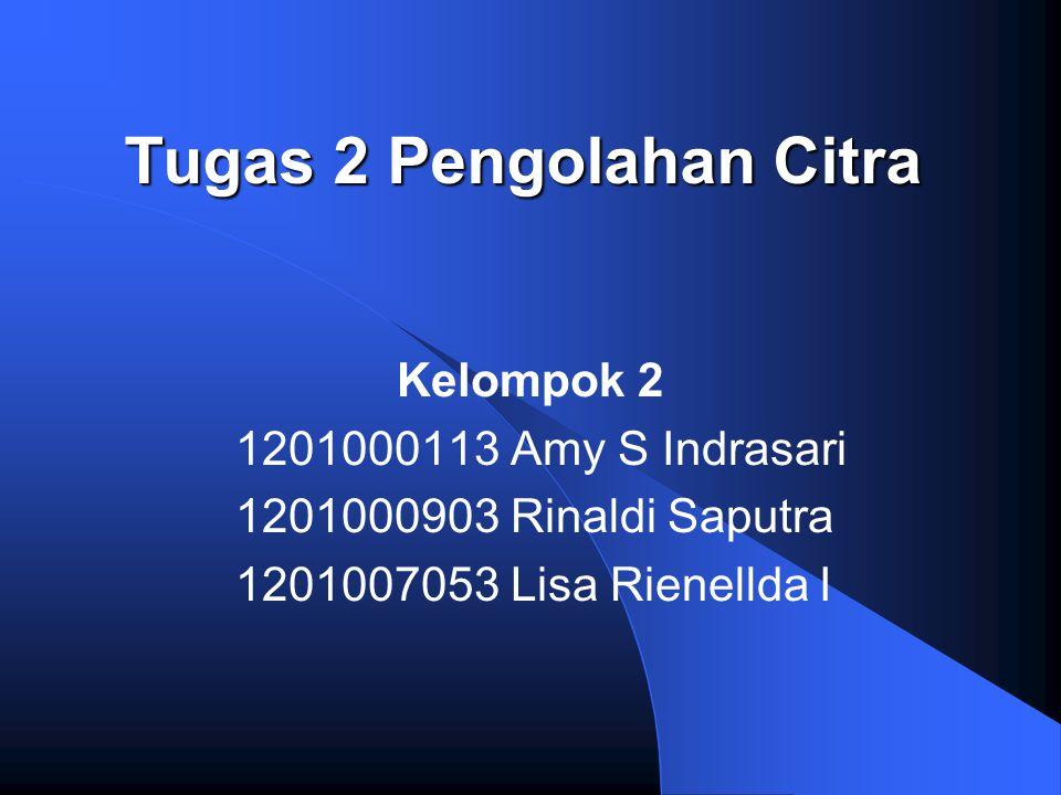 Tugas 2 Pengolahan Citra Kelompok 2 1201000113 Amy S Indrasari 1201000903 Rinaldi Saputra 1201007053 Lisa Rienellda I