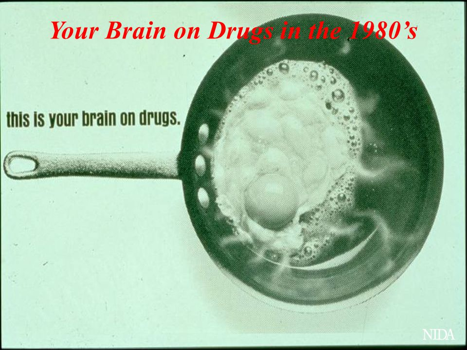 Your Brain on Drugs in the 1980's