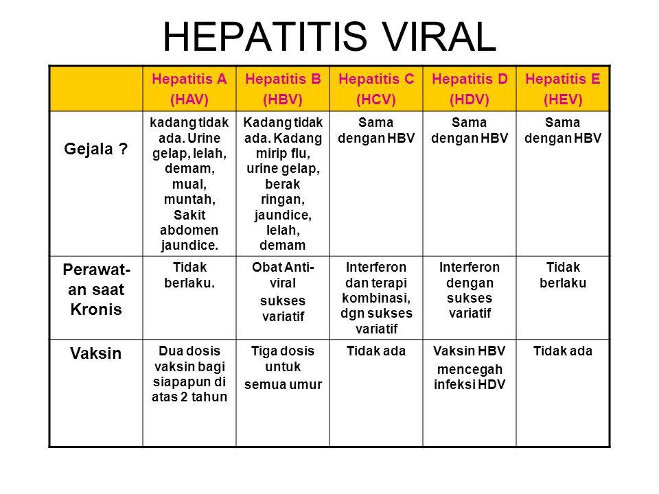 HEPATITIS VIRAL Hepatitis A (HAV) Hepatitis B (HBV) Hepatitis C (HCV) Hepatitis D (HDV) Hepatitis E (HEV) Apa? HAV adalah virus yang menyebabkan perad