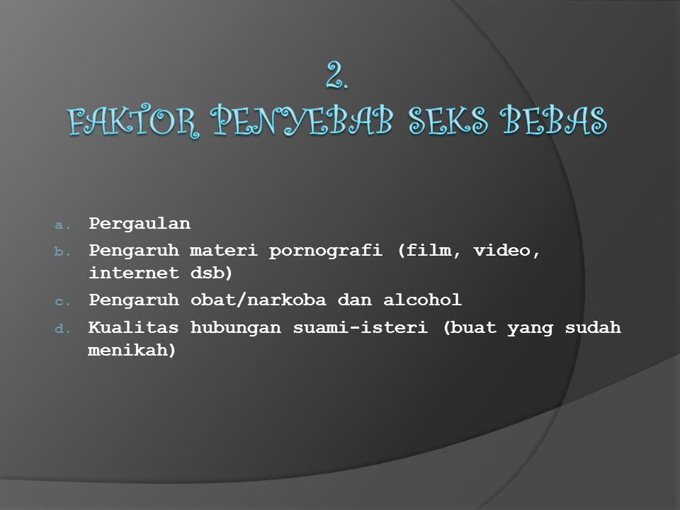 a. Pergaulan b. Pengaruh materi pornografi (film, video, internet dsb) c.