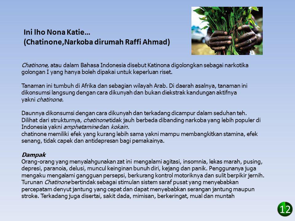 Ini lho Nona Katie… (Chatinone,Narkoba dirumah Raffi Ahmad) Chatinone, atau dalam Bahasa Indonesia disebut Katinona digolongkan sebagai narkotika golongan I yang hanya boleh dipakai untuk keperluan riset.