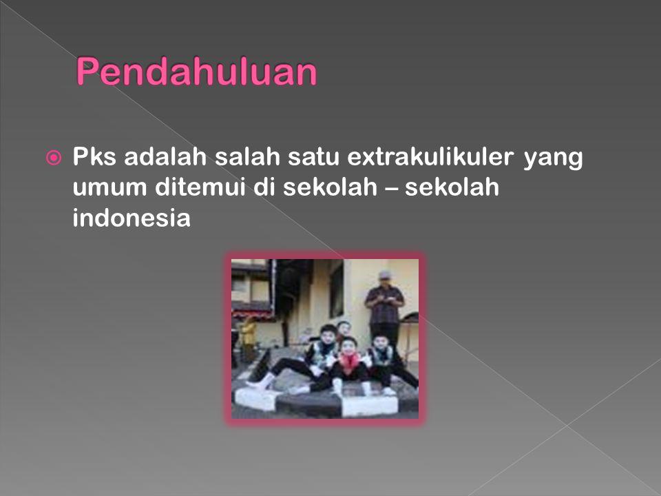 Pks adalah salah satu extrakulikuler yang umum ditemui di sekolah – sekolah indonesia