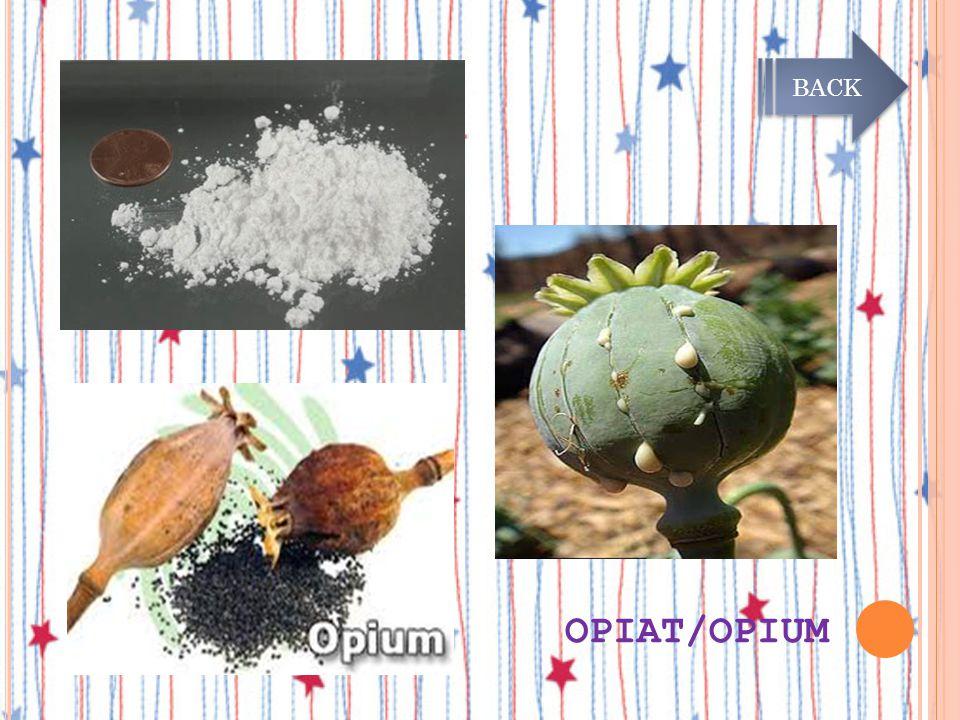 JENIS-JENIS NARKOBA OPIAT atau Opium (candu) Merupakan golongan Narkotika alami yang sering digunakan dengan cara dihisap (inhalasi). Menimbulkan rasa