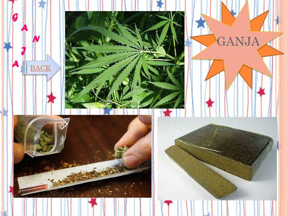 JENIS-JENIS NARKOBA Berasal dari tanaman kanabis sativa dan kanabis indica. Pada tanaman ini terkandung 3 zat utama yaitu tetrahidrokanabinol, kanabin