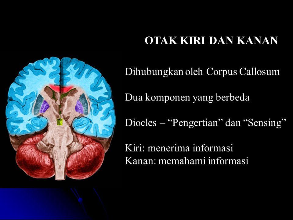 OTAK KIRI DAN KANAN Dihubungkan oleh Corpus Callosum Dua komponen yang berbeda Diocles – Pengertian dan Sensing Kiri: menerima informasi Kanan: memahami informasi
